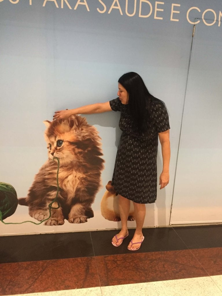 I am standing in front of a picture of a huge cat, Americas Shopping