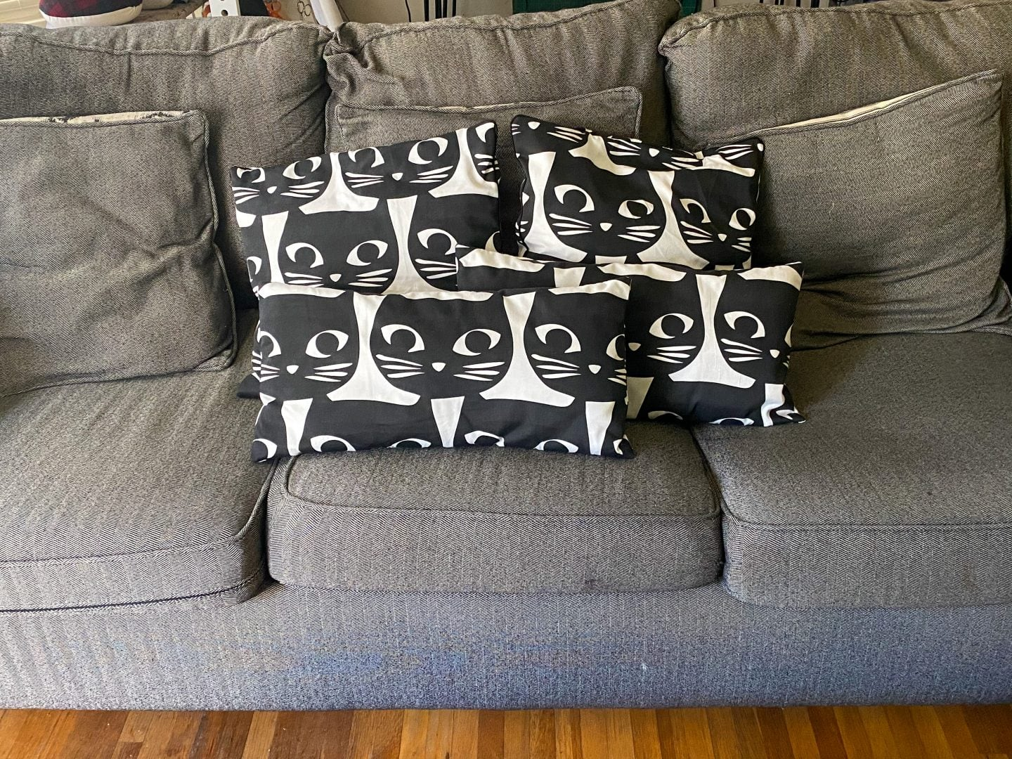 Image of gray couch with gray and cat pillows on it